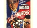 call_it_murder-500x500