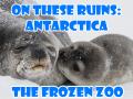 Antarctica TITLE-500x500
