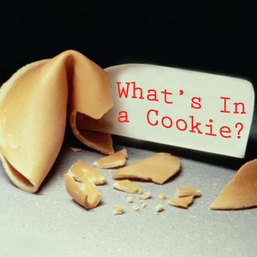 What's In a Cookie-500x500