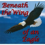 Beneath the Wing of an Eagle TITLE-500x500