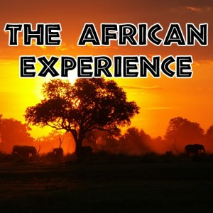 The African Experience TITLE-500x500